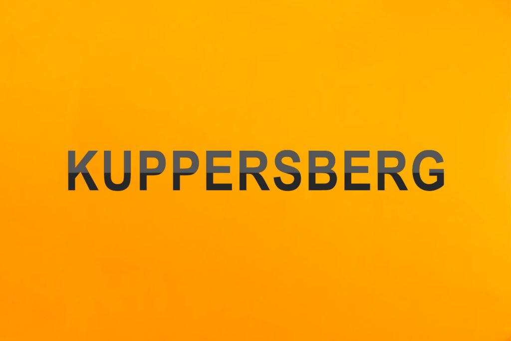 Скидка на технику Kuppersberg
